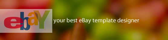 eBay Template Layout